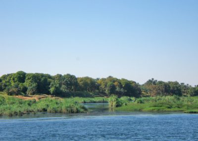 Nil, estuaire, berge